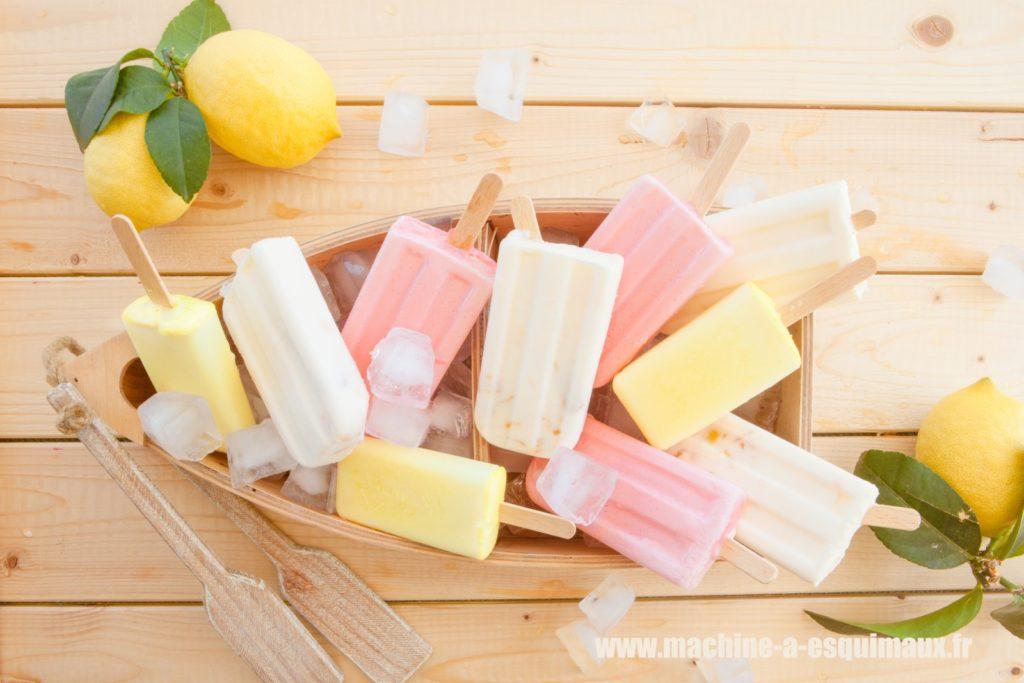 Machines à glace Batonnet Popsicle icepop esquimaux